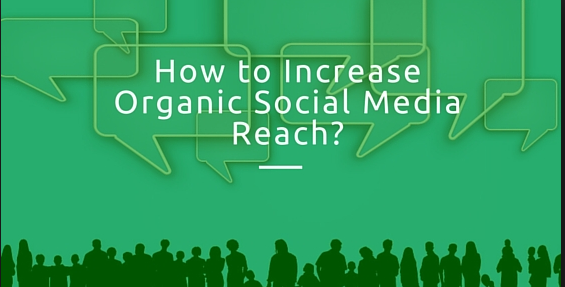 How to Improve your Reach on Top Social Media Networks Organically?